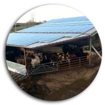 Installing solar on agricultural buildings